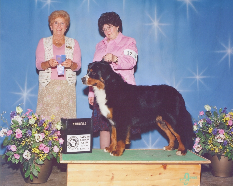 National Dog Show Individual Breed Winners