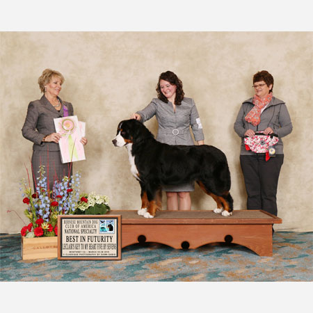 Best in Futurity 2015