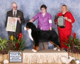 Best in Futurity <br/>at BMDCA Nationals